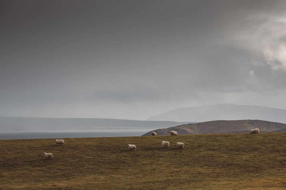 2015_10_16-23_Islandia_A_43