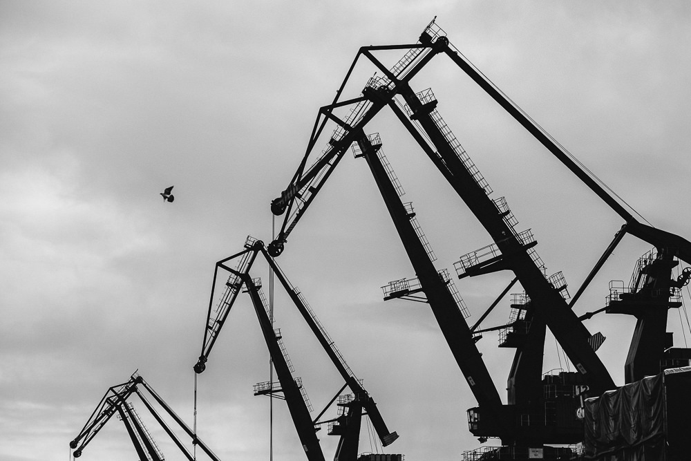 175 175 64 64 Cranes