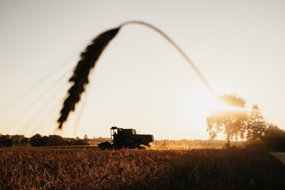 193 193 82 70 Harvest