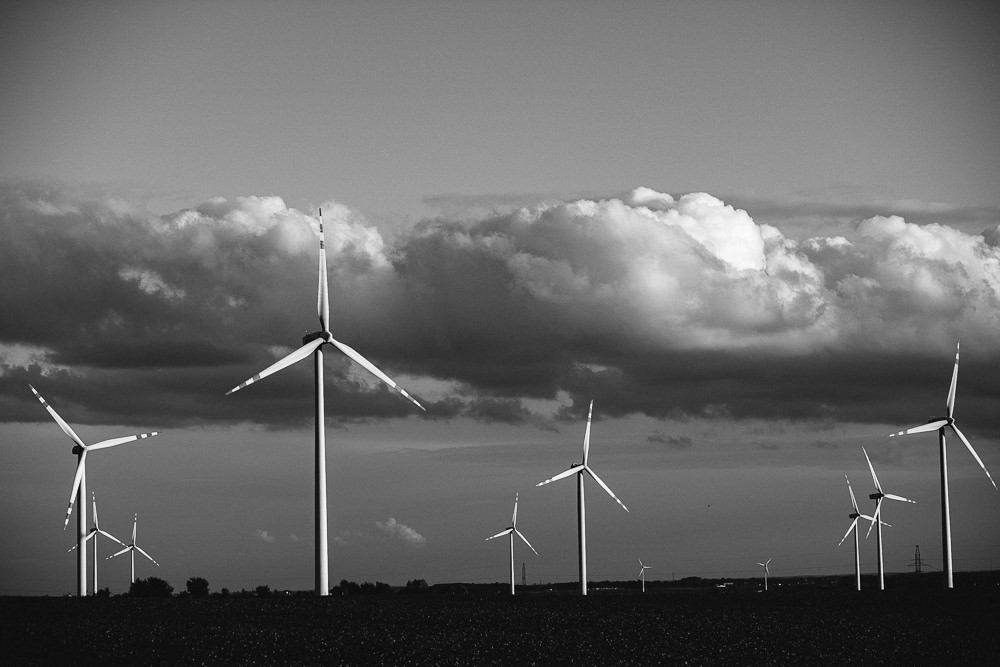 202 202 91 73 Windmills